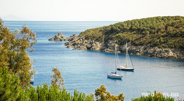 Mit dem Segelboot Elbas Küsten entlangfahren: Segelkurse und Vermietungen von Segelbooten